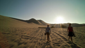 Two companions walking over dune
